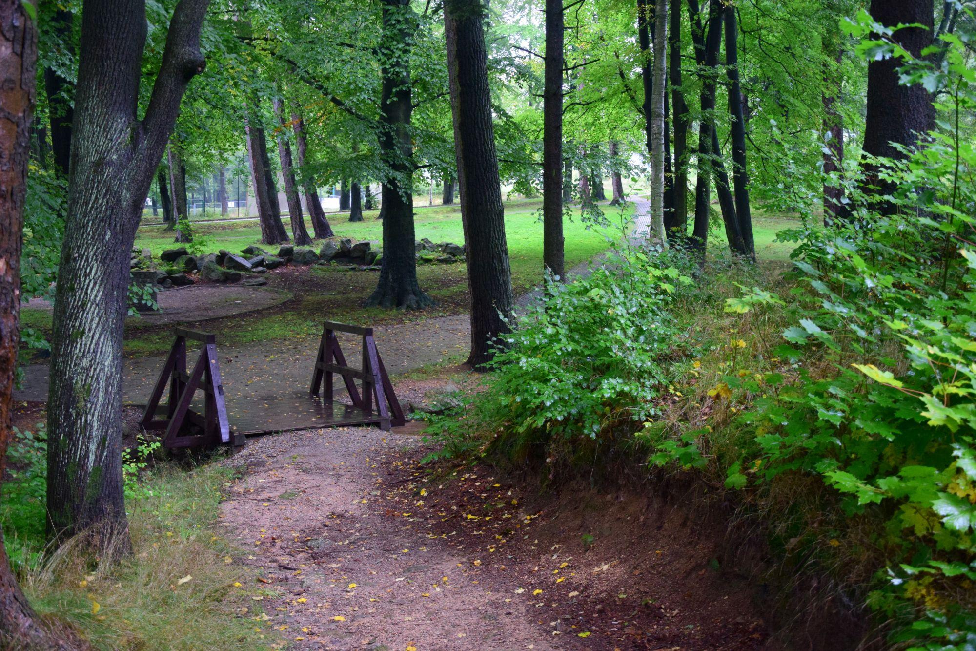 3. Leśny Park Miejski w Kowarach